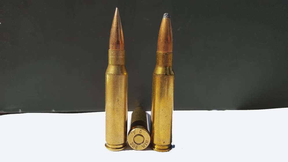3 .308 cartridges